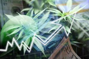 illustration showing growth of legal marijuana industry